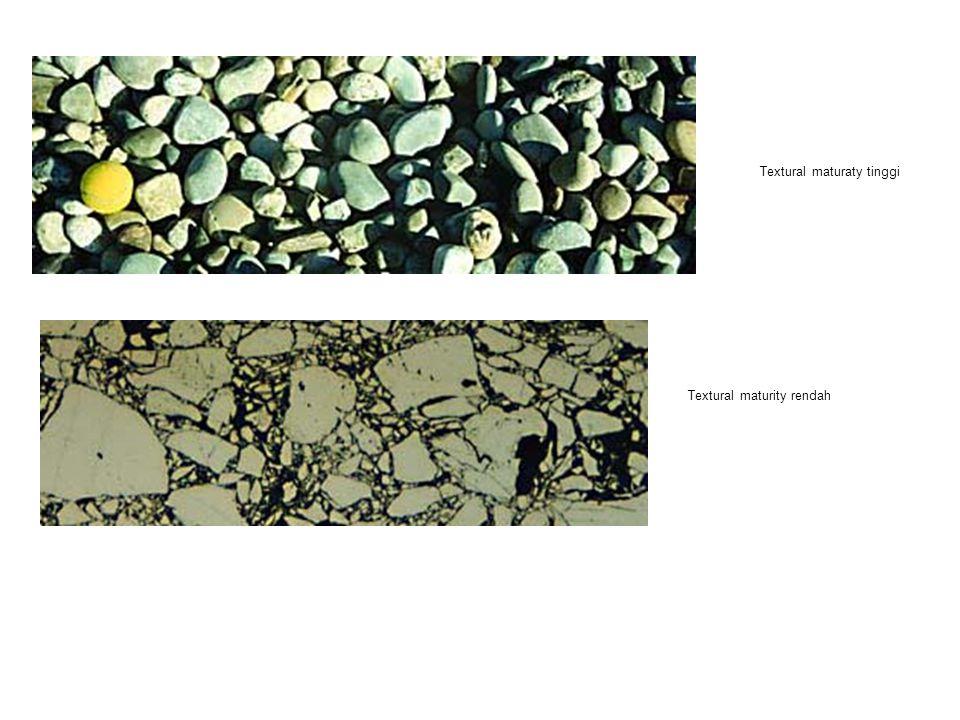Textural maturity rendah Textural maturaty tinggi
