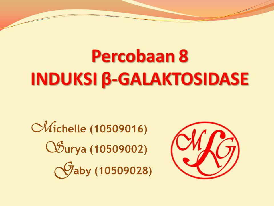 M ichelle (10509016) S urya (10509002) G aby (10509028)