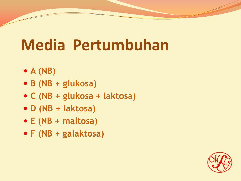 Media Pertumbuhan A (NB) B (NB + glukosa) C (NB + glukosa + laktosa) D (NB + laktosa) E (NB + maltosa) F (NB + galaktosa)