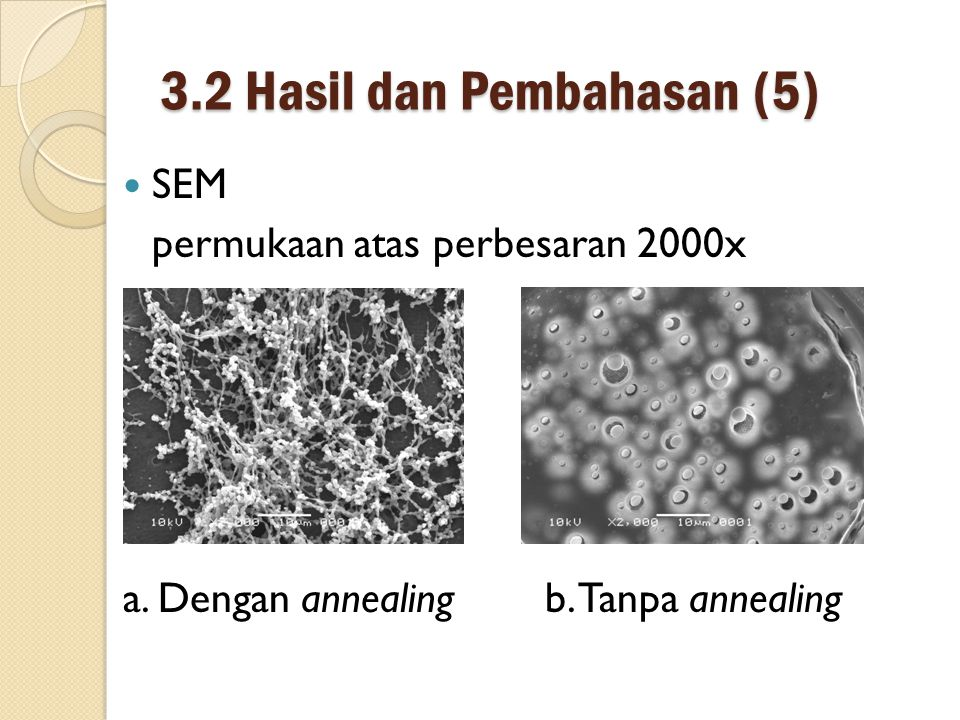 3.2 Hasil dan Pembahasan (5) SEM permukaan atas perbesaran 2000x a.