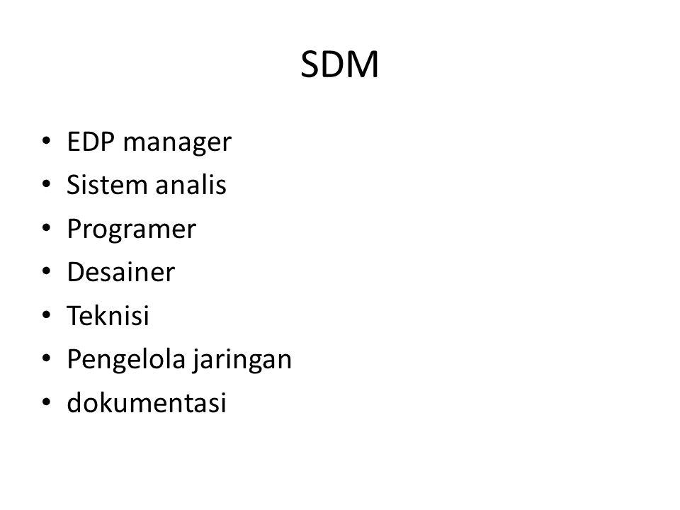 SDM EDP manager Sistem analis Programer Desainer Teknisi Pengelola jaringan dokumentasi