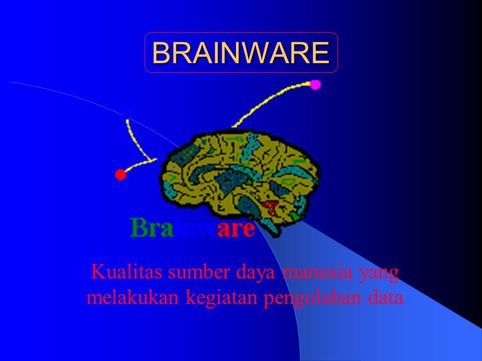 Kualitas sumber daya manusia yang melakukan kegiatan pengolahan data BRAINWARE