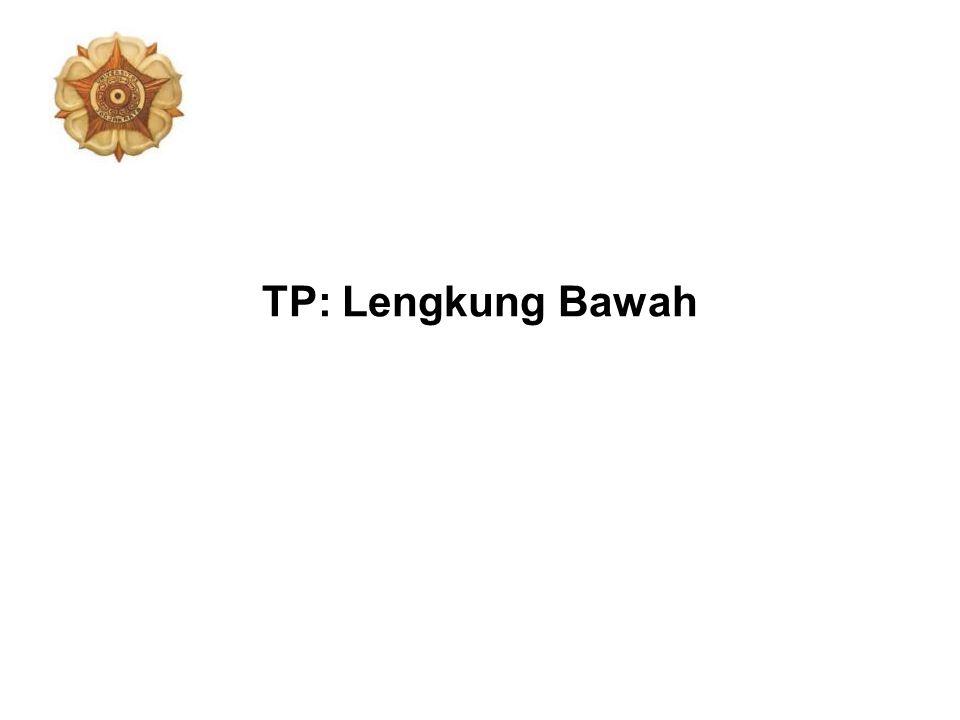 TP: Lengkung Bawah