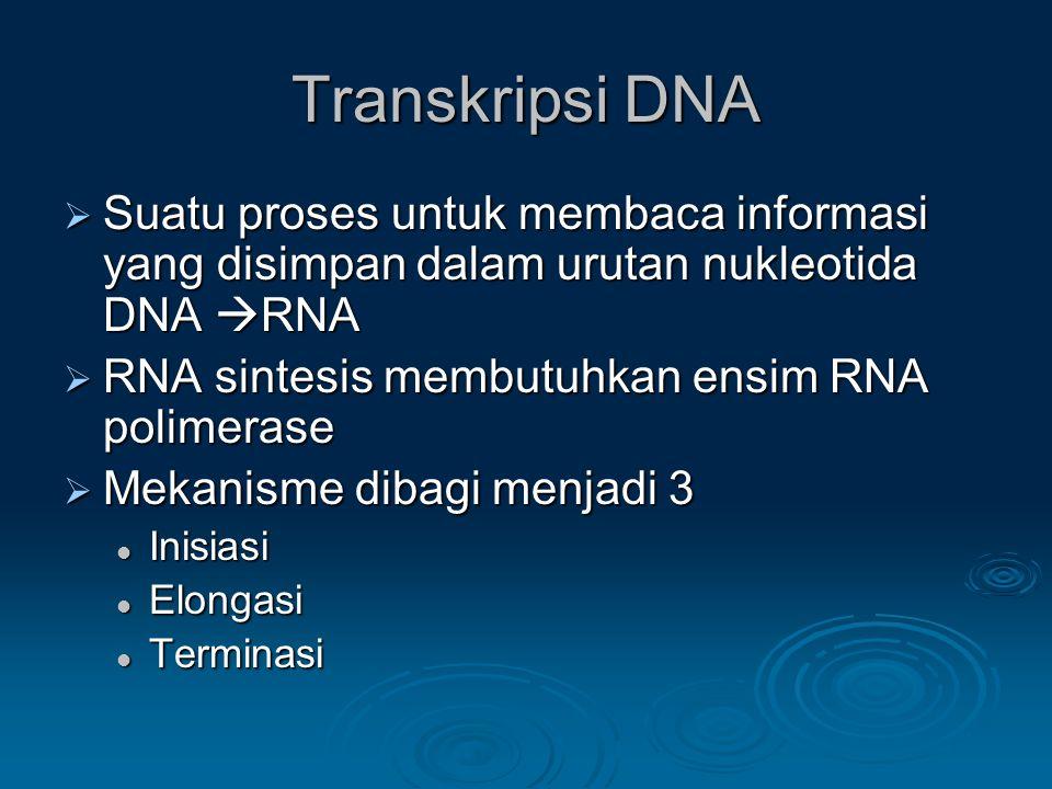 Transkripsi DNA  Suatu proses untuk membaca informasi yang disimpan dalam urutan nukleotida DNA  RNA  RNA sintesis membutuhkan ensim RNA polimerase  Mekanisme dibagi menjadi 3 Inisiasi Inisiasi Elongasi Elongasi Terminasi Terminasi