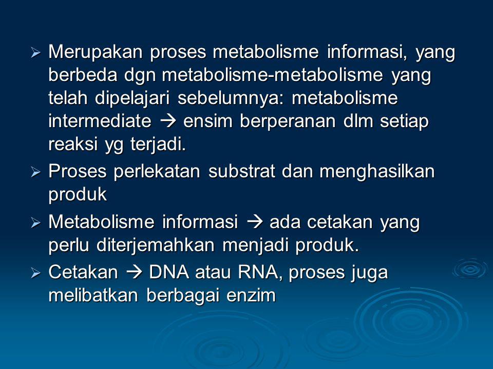 Proses utama dlm metabolisme informasi: 1.Replikasi  DNA berperan sbg cetakan untuk sintesisnya sdr 2.