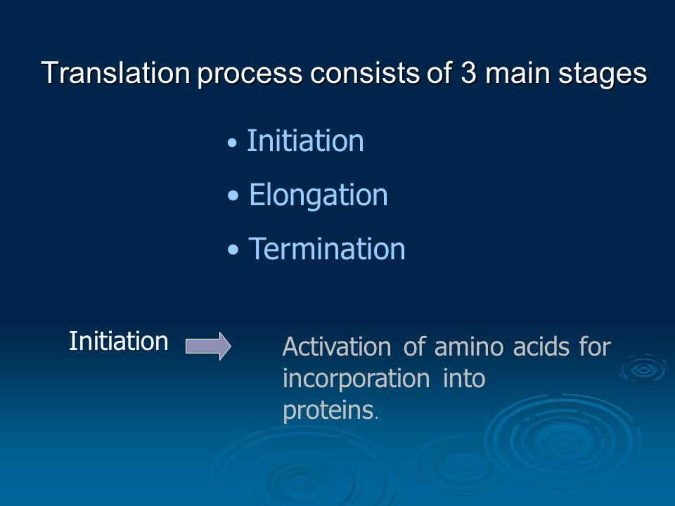 Translation process consists of 3 main stages Initiation Elongation Termination Initiation Activation of amino acids for incorporation into proteins.