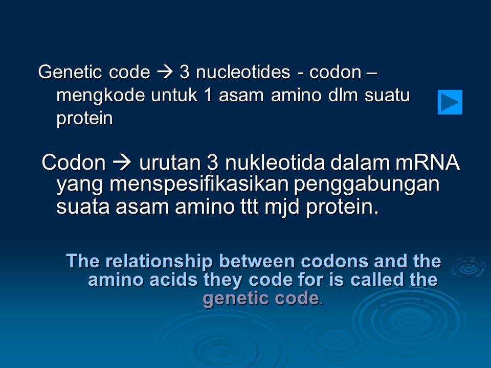 Codon  urutan 3 nukleotida dalam mRNA yang menspesifikasikan penggabungan suata asam amino ttt mjd protein. Codon  urutan 3 nukleotida dalam mRNA ya