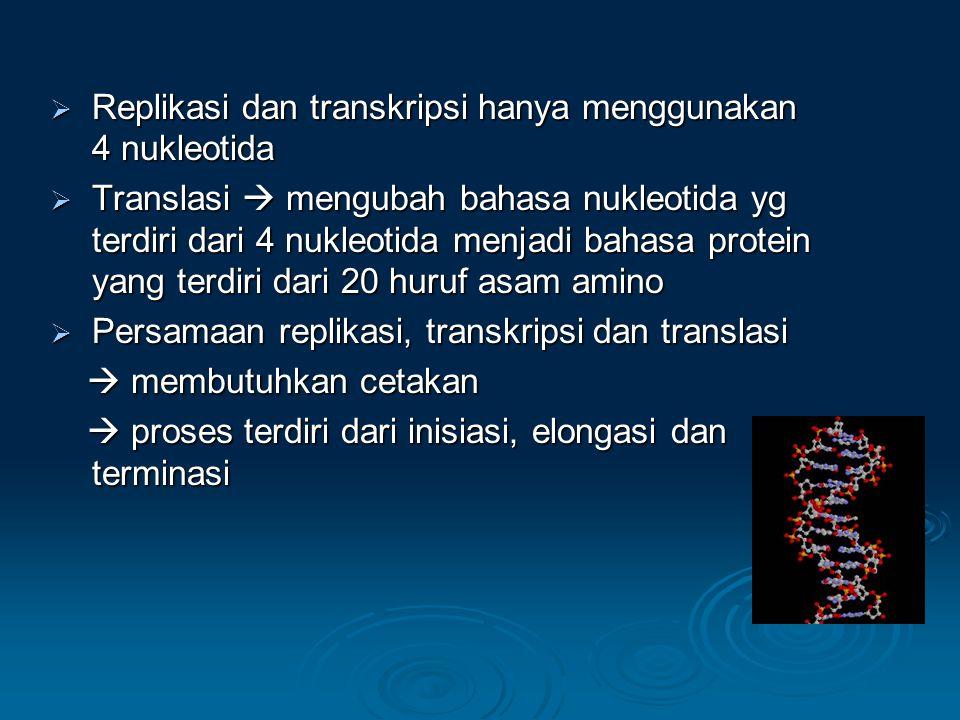  Replikasi dan transkripsi hanya menggunakan 4 nukleotida  Translasi  mengubah bahasa nukleotida yg terdiri dari 4 nukleotida menjadi bahasa protein yang terdiri dari 20 huruf asam amino  Persamaan replikasi, transkripsi dan translasi  membutuhkan cetakan  proses terdiri dari inisiasi, elongasi dan terminasi