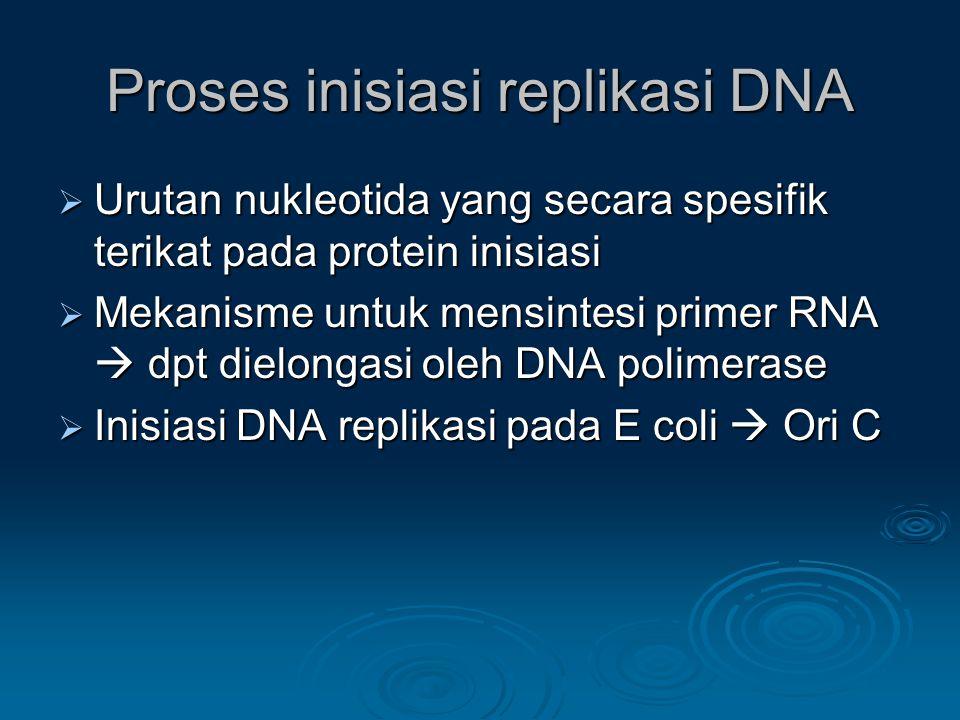 Proses inisiasi replikasi DNA  Urutan nukleotida yang secara spesifik terikat pada protein inisiasi  Mekanisme untuk mensintesi primer RNA  dpt die