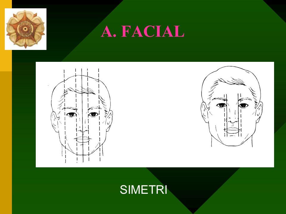 Diagnosis A.Facial B.Dental Arch/Lengkung Gigi C.Hub. Dentoskeletal arah Transversal D.Hub. Dentoskeletal arah Sagital/Anteroposterior E.Hub. Dentoske