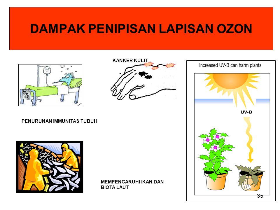 Mulai Rusaknya Lapisan Ozon Lapisan Ozon mempunyai peran sangat penting bagi kehidupan di bumi. Lapisan ozon berfungsi sebagai filter untuk mencegah m