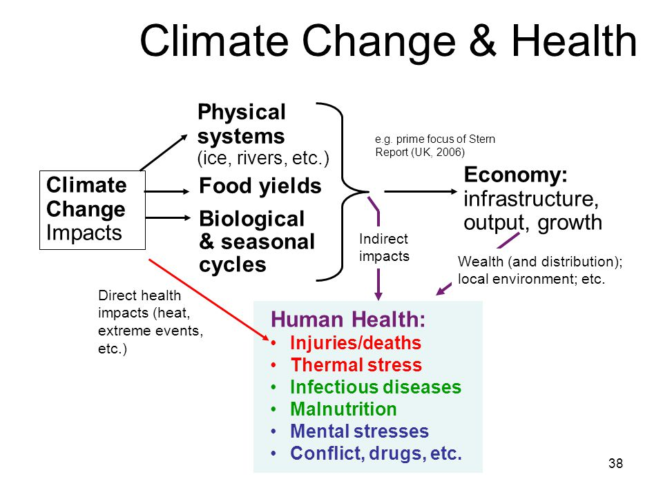 Health effects Temperature-related illness and death Extreme weather- related health effects Air pollution-related health effects Water and food-borne
