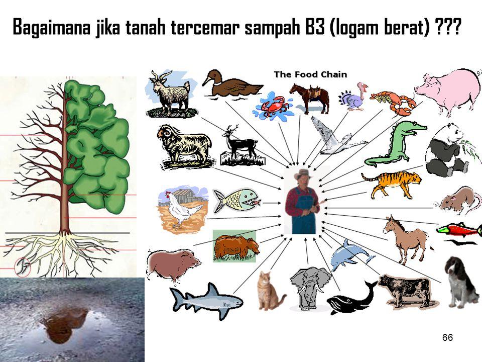 CONTOH-CONTOH SAMPAH B3 RUMAH TANGGA  MENGANDUNG LOGAM BERAT BERBAHAYA 65