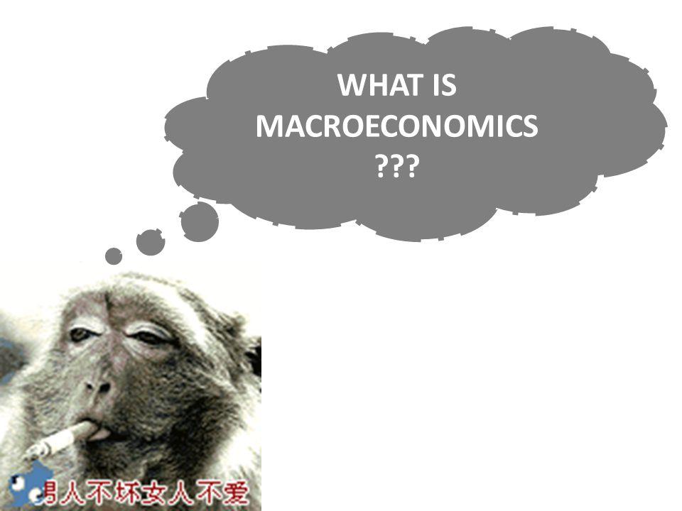 WHAT IS MACROECONOMICS ???