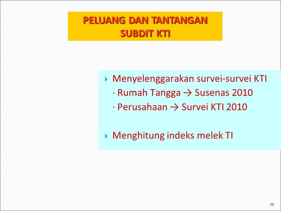 19  Menyelenggarakan survei-survei KTI ∙ Rumah Tangga → Susenas 2010 ∙ Perusahaan → Survei KTI 2010  Menghitung indeks melek TI PELUANG DAN TANTANGAN SUBDIT KTI