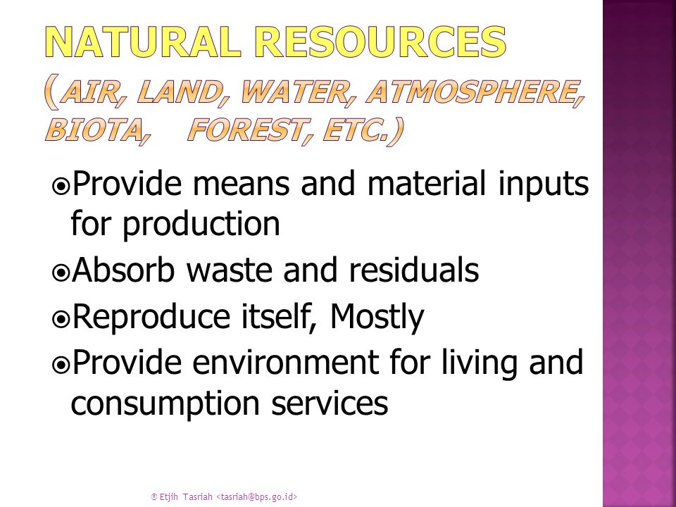  Provide means and material inputs for production  Absorb waste and residuals  Reproduce itself, Mostly  Provide environment for living and consumption services ® Etjih Tasriah