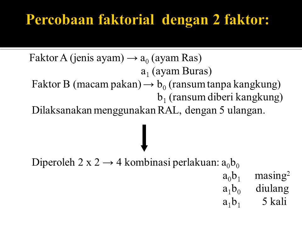 Faktor A (jenis ayam) → a 0 (ayam Ras) a 1 (ayam Buras) Faktor B (macam pakan) → b 0 (ransum tanpa kangkung) b 1 (ransum diberi kangkung) Dilaksanakan