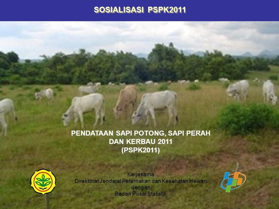 TUJUAN Secara umum tujuan PSPK2011 adalah sebagai dukungan utama untuk Program Swasembada Daging Sapi dan Kerbau (PSDSK) 2010-2014.
