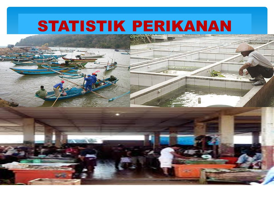  Data statistik perikanan yang secara rutin dikumpulkan oleh BPS adalah :  Data Statistik Perusahaan Perikanan  Tempat Pelelangan Ikan (TPI)  Pangkalan Pendaratan Ikan (PPI) yang tidak ada TPI  Pelabuhan Perikanan (PP) DATA PERIKANAN