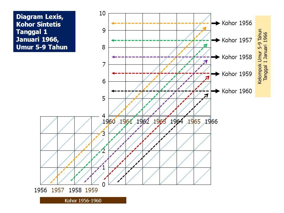 Kohor 1956 10 9 7 6 5 4 3 2 0 1 8 19661964 1963 19621961 1960 1965 Diagram Lexis, Kohor Sintetis Tanggal 1 Januari 1966, Umur 5-9 Tahun 1959 1957 1956