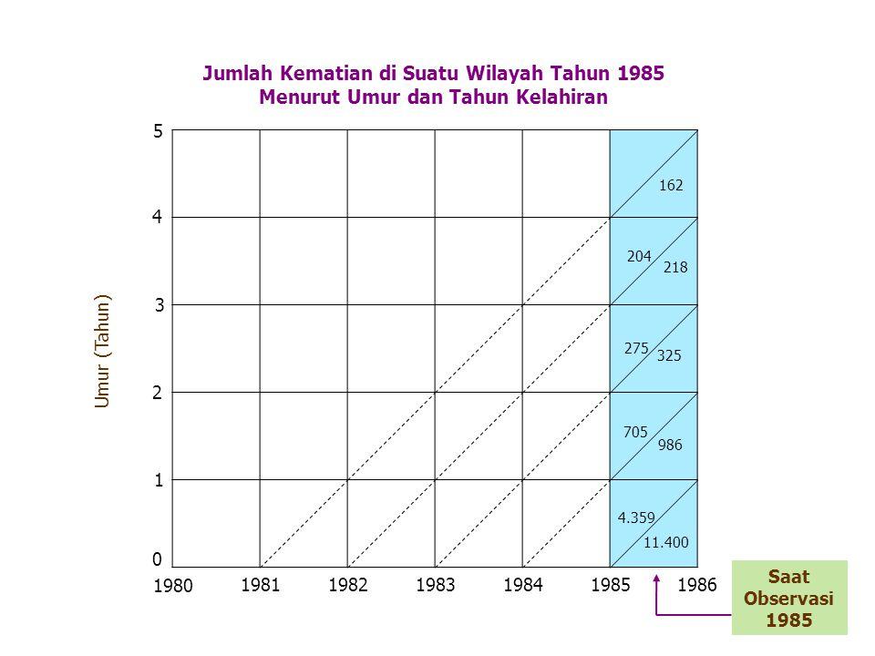 Umur (Tahun) Jumlah Kematian di Suatu Wilayah Tahun 1985 Menurut Umur dan Tahun Kelahiran 162 1980 198119821983 1984 1985 1986 0 1 2 3 4 5 204 218 275 325 705 986 4.359 11.400 Saat Observasi 1985