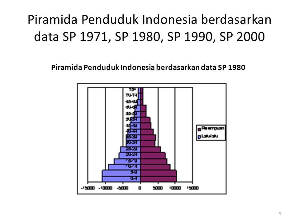 Piramida Penduduk Indonesia berdasarkan data SP 1971, SP 1980, SP 1990, SP 2000 Piramida Penduduk Indonesia berdasarkan data SP 1990 10