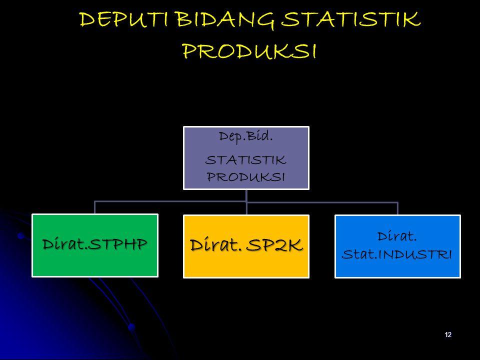 DEPUTI BIDANG STATISTIK PRODUKSI Dep.Bid. STATISTIK PRODUKSI Dirat.STPHP Dirat. SP2K Dirat. Stat.INDUSTRI 12