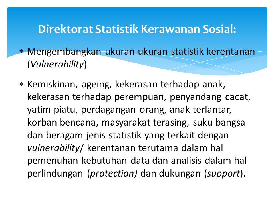  Mengembangkan ukuran-ukuran statistik kerentanan (Vulnerability)  Kemiskinan, ageing, kekerasan terhadap anak, kekerasan terhadap perempuan, penyan