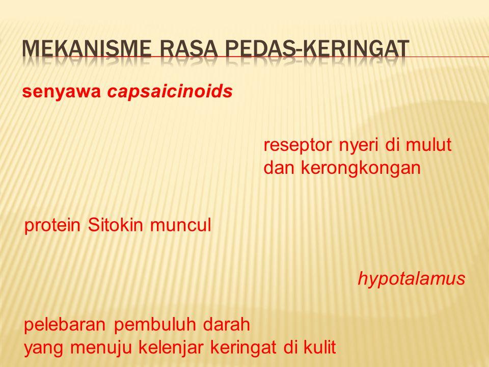 senyawa capsaicinoids reseptor nyeri di mulut dan kerongkongan protein Sitokin muncul hypotalamus pelebaran pembuluh darah yang menuju kelenjar keringat di kulit