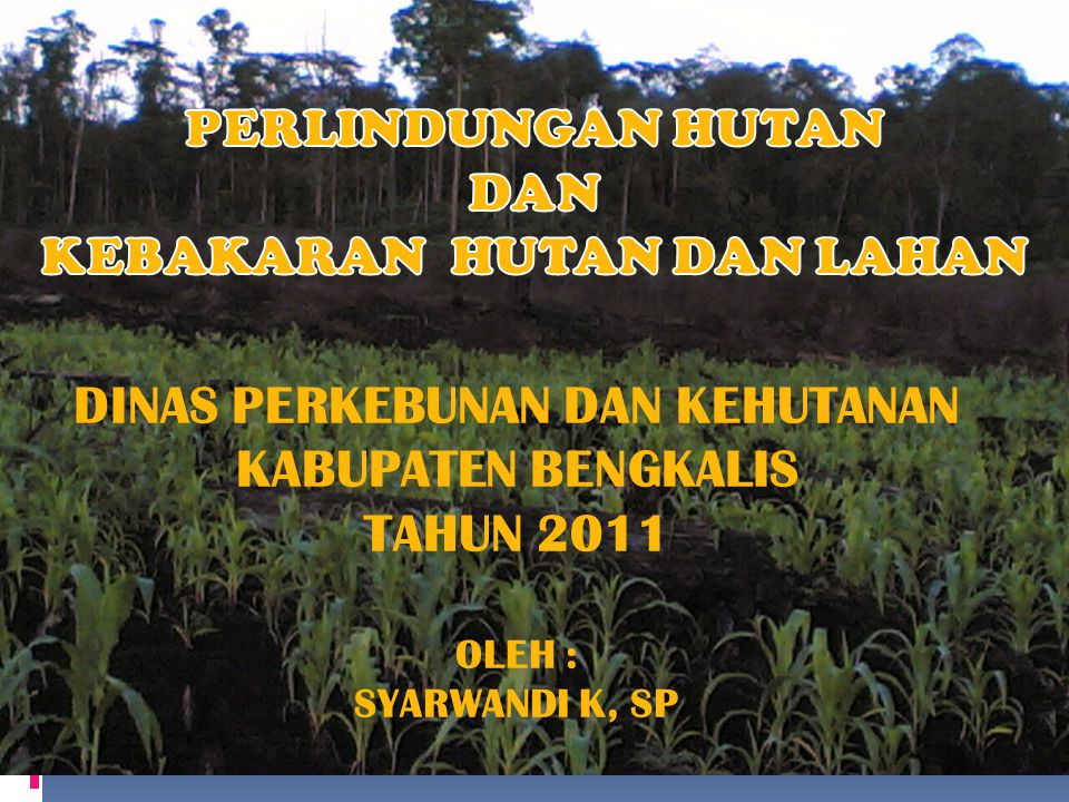 SARANA PRASARANA 1.MOBIL PEMADAM KEBAKARAN 2 UNIT 2.