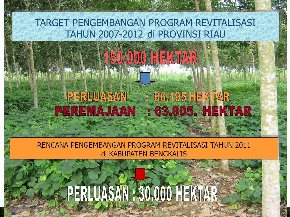 TARGET PENGEMBANGAN PROGRAM REVITALISASI TAHUN 2007-2012 di PROVINSI RIAU TARGET PENGEMBANGAN PROGRAM REVITALISASI TAHUN 2007-2012 di PROVINSI RIAU RENCANA PENGEMBANGAN PROGRAM REVITALISASI TAHUN 2011 di KABUPATEN BENGKALIS RENCANA PENGEMBANGAN PROGRAM REVITALISASI TAHUN 2011 di KABUPATEN BENGKALIS