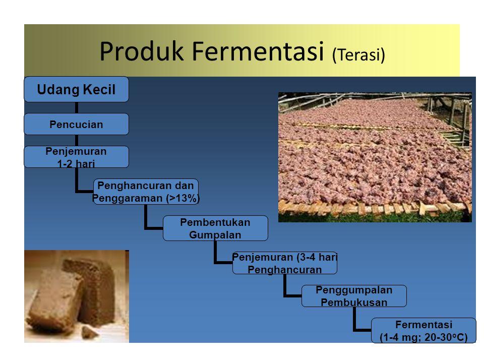 Produk Fermentasi (Terasi)