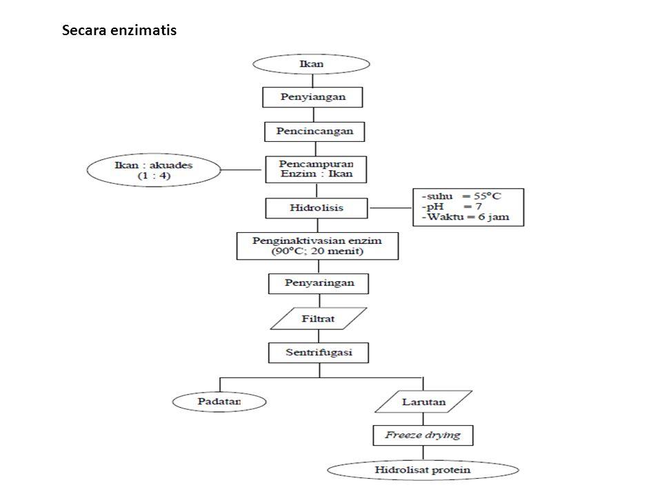 Secara enzimatis
