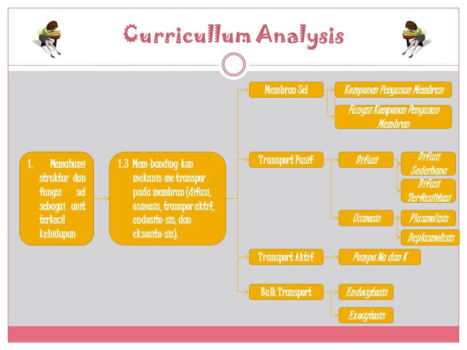 Curricullum Analysis 1.