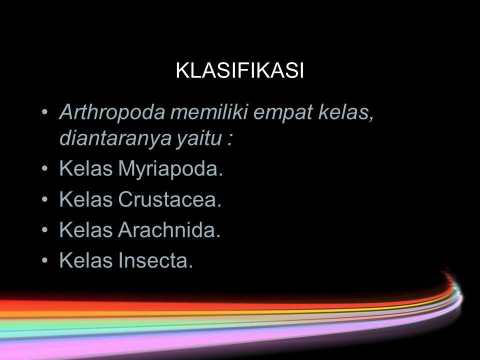 KLASIFIKASI Arthropoda memiliki empat kelas, diantaranya yaitu : Kelas Myriapoda.