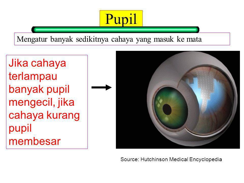 Daya Akomodasi Adalah kemampuan lensa mata untuk menebal dan menipis tergantung jarak obyek yang dilihat mata