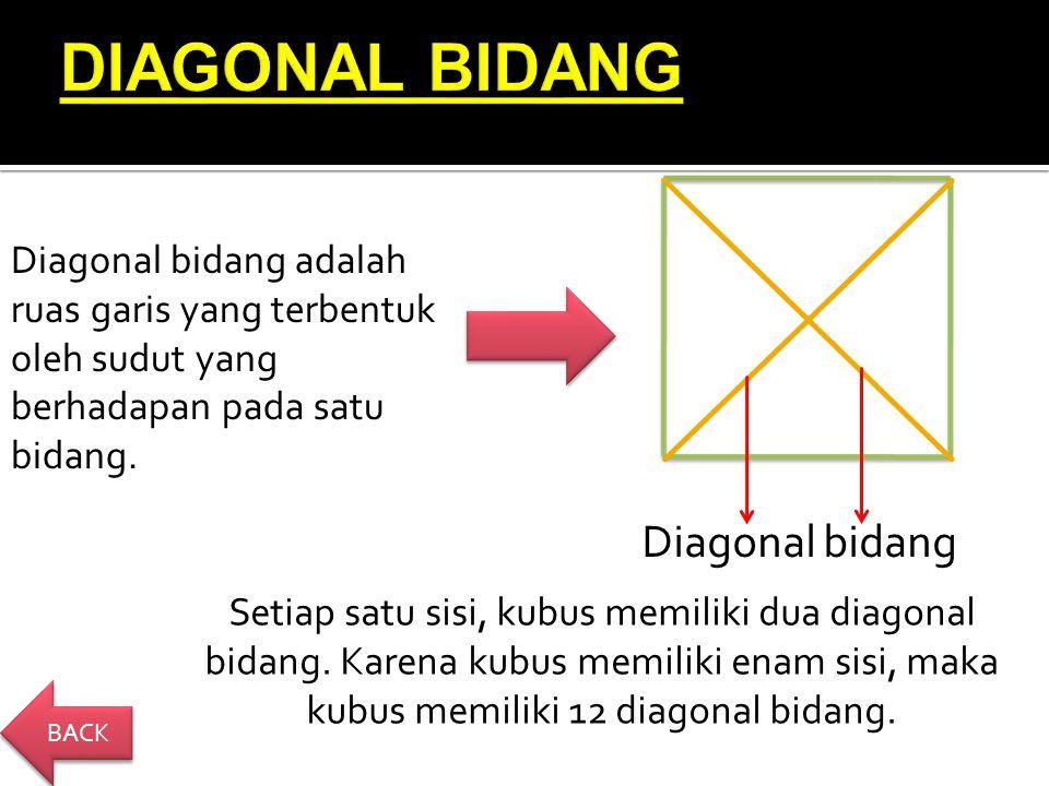 Diagonal bidang Setiap satu sisi, kubus memiliki dua diagonal bidang.