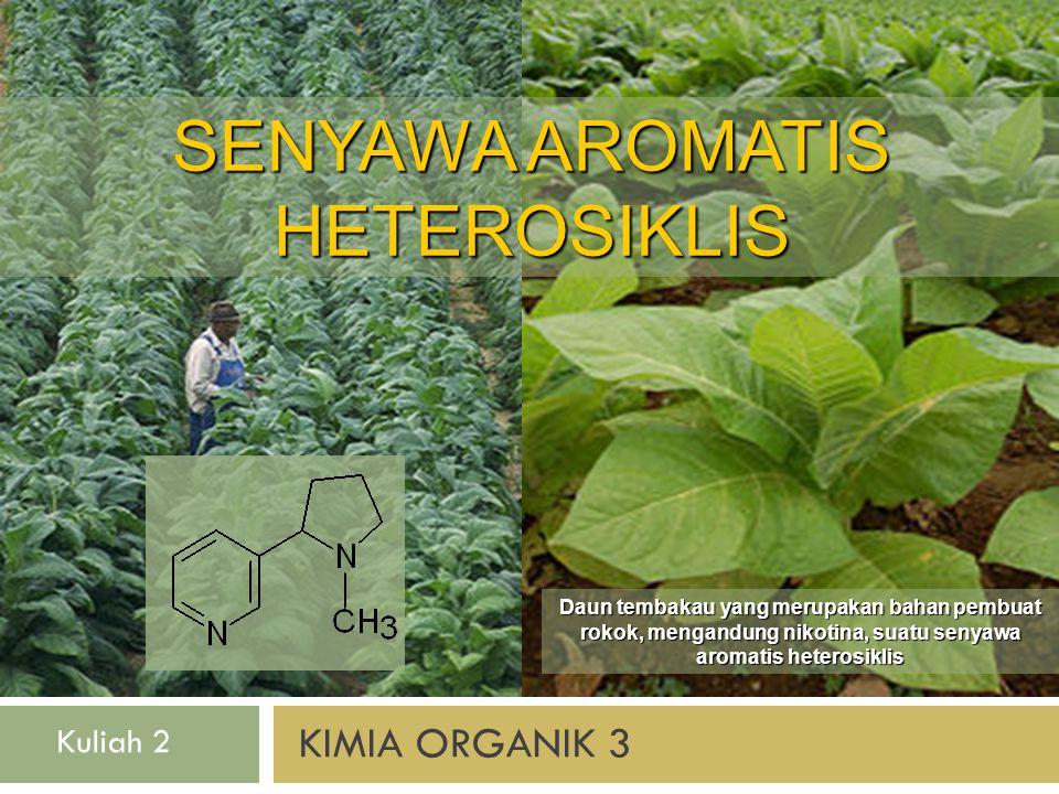 KIMIA ORGANIK 3 SENYAWA AROMATIS HETEROSIKLIS Daun tembakau yang merupakan bahan pembuat rokok, mengandung nikotina, suatu senyawa aromatis heterosiklis Kuliah 2