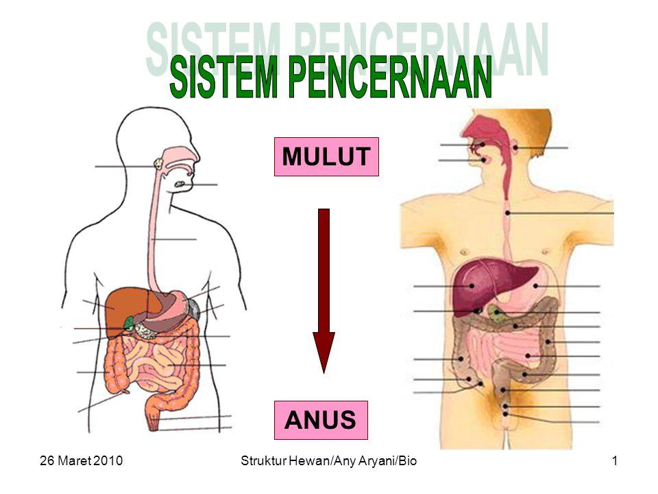 26 Maret 2010Struktur Hewan/Any Aryani/Bio2  Makan (ingestion)  Pencernaan (digestion)  Penyerapan (absorption)  Pembuangan (egestion) Peran Utama : Pencernaan : Pemecahan bahan makanan dari molekul besar menjadi lebih kecil (halus), baik secara fisik maupun kimiawi agar selanjutnya dapat diserap/ diabsorpsi oleh saluran pencernaan.