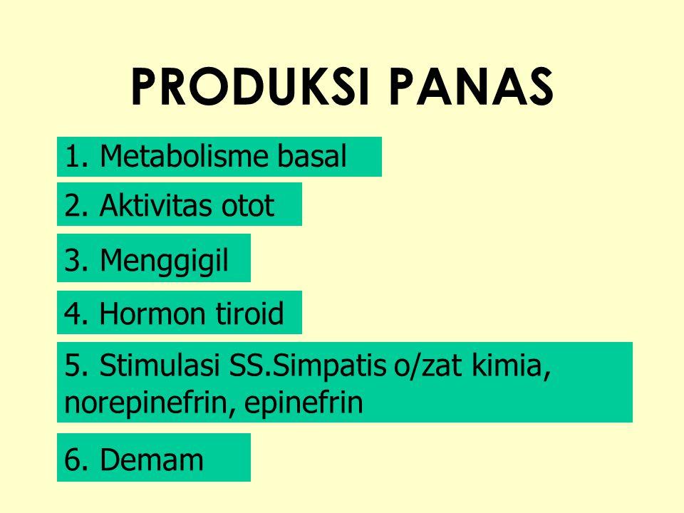 PRODUKSI PANAS 1.Metabolisme basal 2. Aktivitas otot 3.