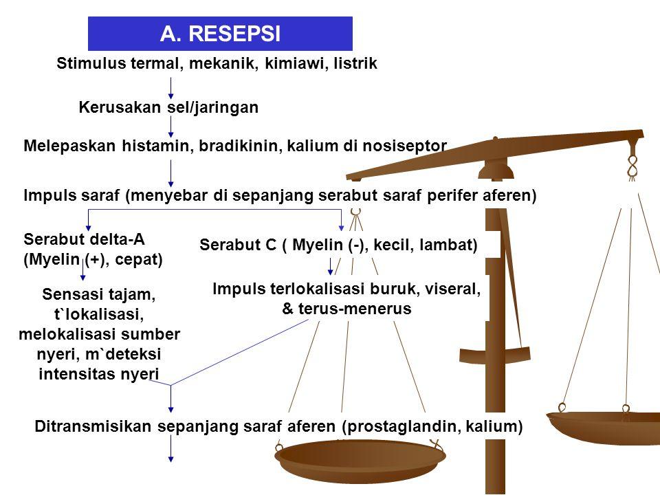 Ditransmisikan sepanjang saraf aferen (prostaglandin, kalium) A. RESEPSI Stimulus termal, mekanik, kimiawi, listrik Kerusakan sel/jaringan Melepaskan