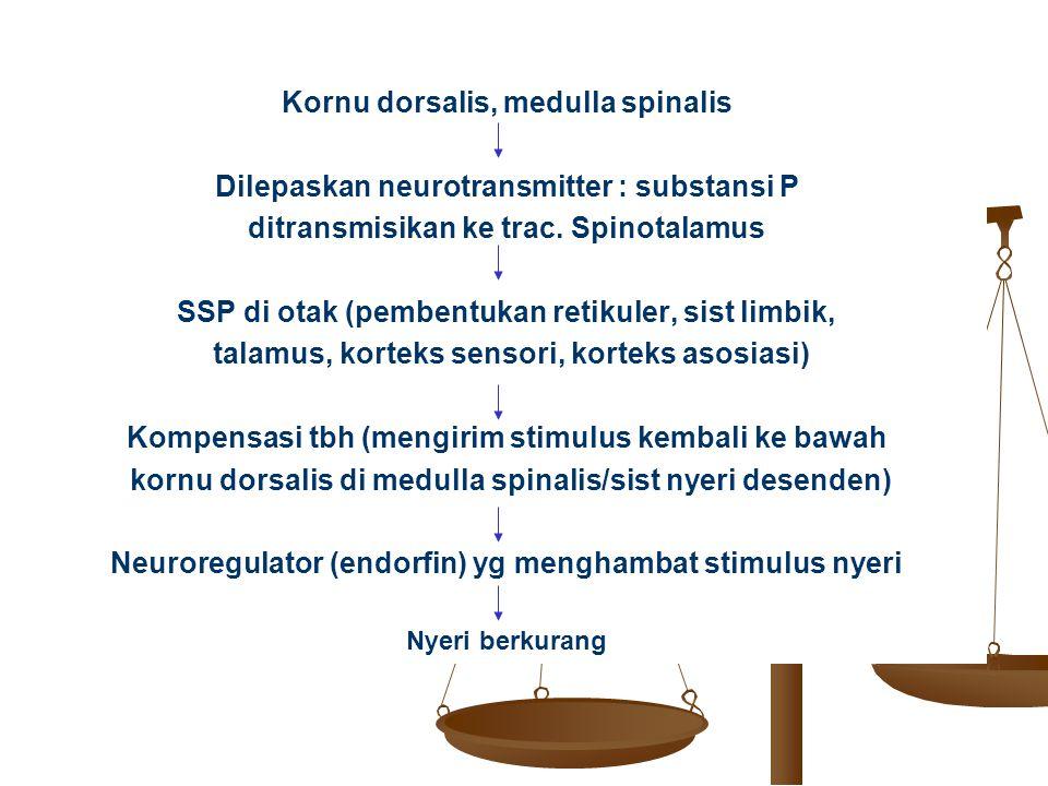 Kornu dorsalis, medulla spinalis Dilepaskan neurotransmitter : substansi P ditransmisikan ke trac. Spinotalamus SSP di otak (pembentukan retikuler, si