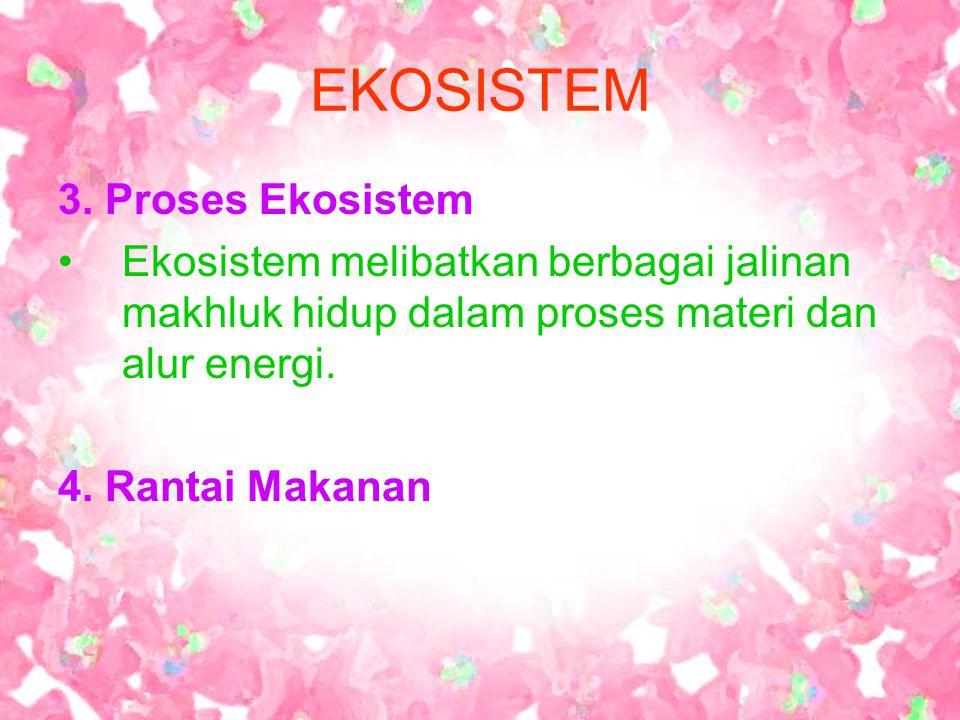 EKOSISTEM 3. Proses Ekosistem Ekosistem melibatkan berbagai jalinan makhluk hidup dalam proses materi dan alur energi. 4. Rantai Makanan