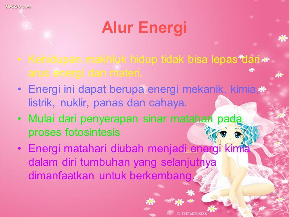 Alur Energi Kehidupan makhluk hidup tidak bisa lepas dari arus energi dan materi. Energi ini dapat berupa energi mekanik, kimia, listrik, nuklir, pana