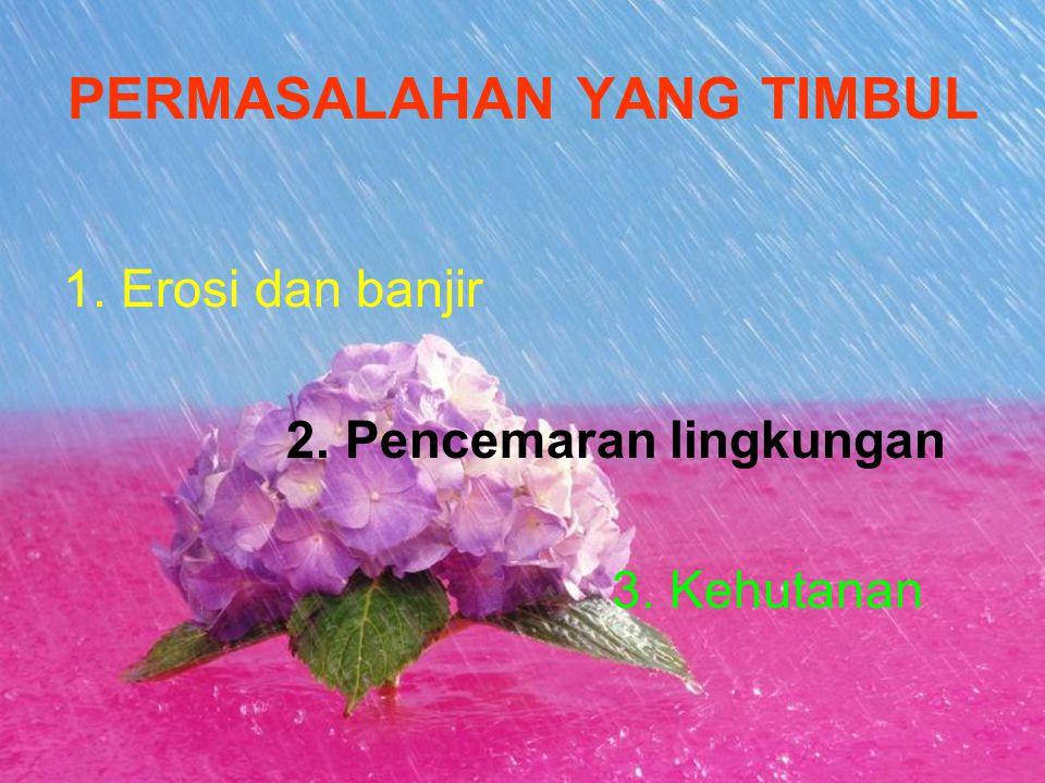PERMASALAHAN YANG TIMBUL 1. Erosi dan banjir 2. Pencemaran lingkungan 3. Kehutanan