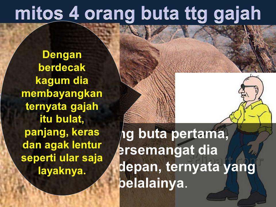 Orang buta ke dua, tidak menyia-nyiakan kesempatan satu menit itu untuk memegang telinga gajah.