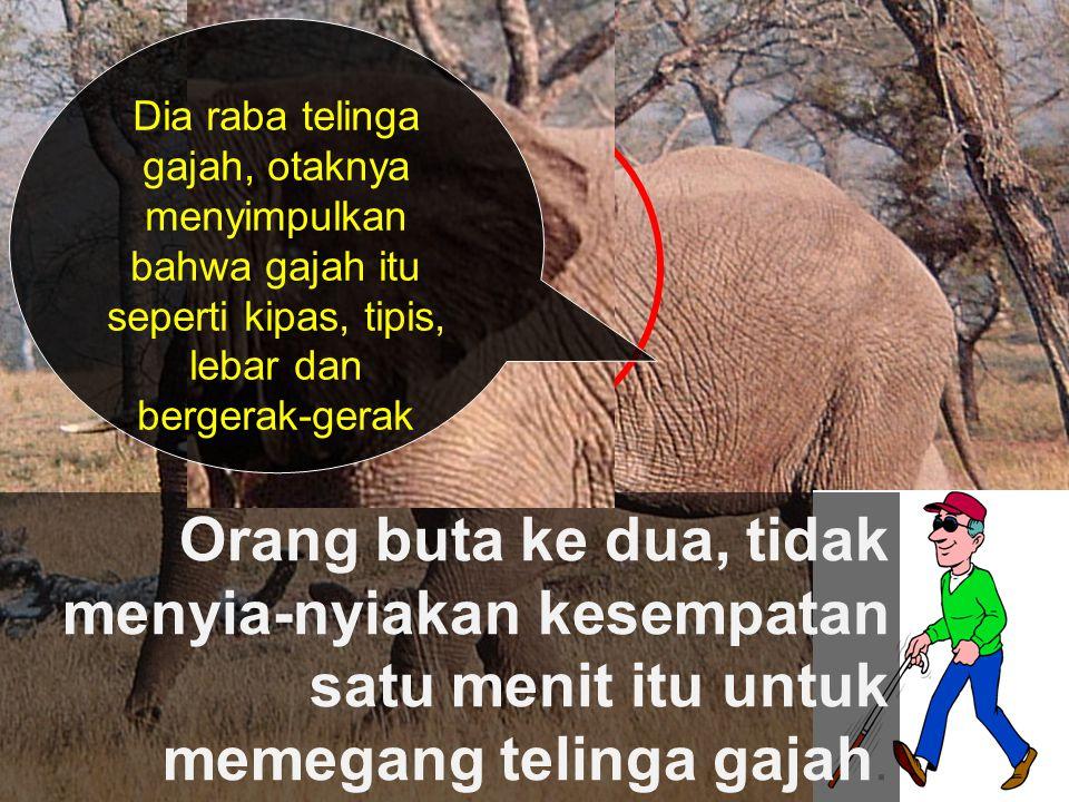 Orang buta ke dua, tidak menyia-nyiakan kesempatan satu menit itu untuk memegang telinga gajah. Dia raba telinga gajah, otaknya menyimpulkan bahwa gaj