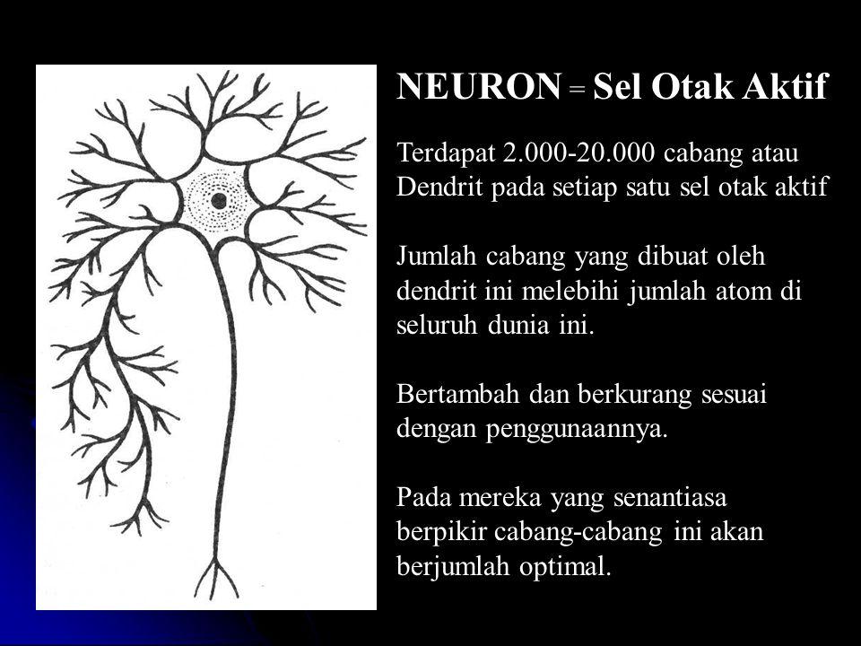 Terdapat 2.000-20.000 cabang atau Dendrit pada setiap satu sel otak aktif Jumlah cabang yang dibuat oleh dendrit ini melebihi jumlah atom di seluruh dunia ini.