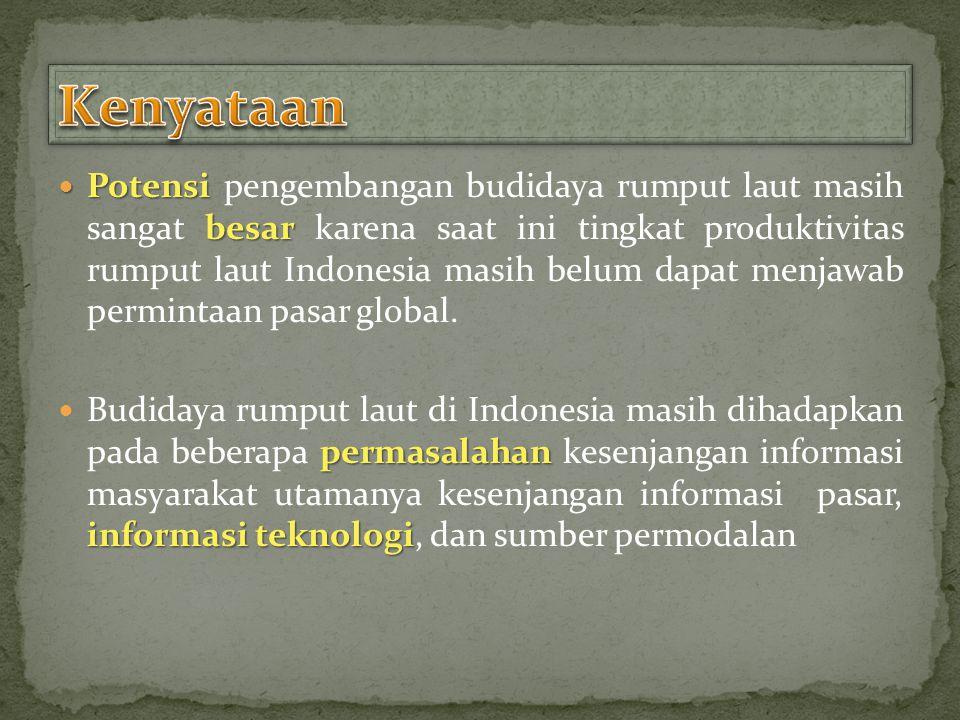 Potensi besar Potensi pengembangan budidaya rumput laut masih sangat besar karena saat ini tingkat produktivitas rumput laut Indonesia masih belum dapat menjawab permintaan pasar global.