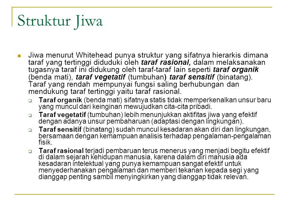 Struktur Jiwa Jiwa menurut Whitehead punya struktur yang sifatnya hierarkis dimana taraf yang tertinggi diduduki oleh taraf rasional, dalam melaksanakan tugasnya taraf ini didukung oleh taraf-taraf lain seperti taraf organik (benda mati), taraf vegetatif (tumbuhan) taraf sensitif (binatang).